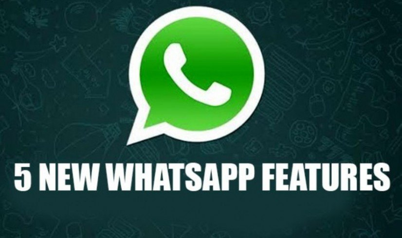 WhatsApp new features 2019: From Dark Mode to Boomerang video, Contact ranking