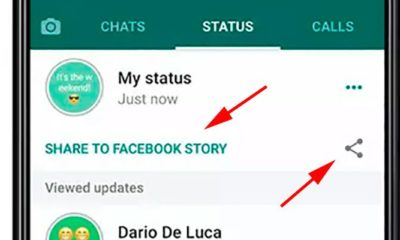 WhatsApp New Feature: how to share your WhatsApp Status on facebook