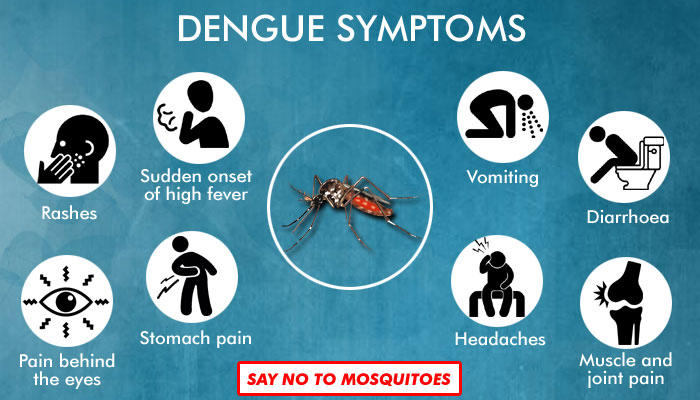 Dengue Takes a Toll on Country, Know Symptoms and way to Prevent the Disease
