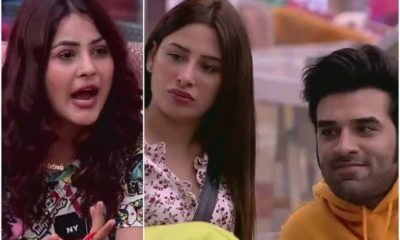 Bigg Boss 13 Voting trends 28th November: Shehnaaz Gill Holds 42% Paras and Mahira in danger of elimination this week
