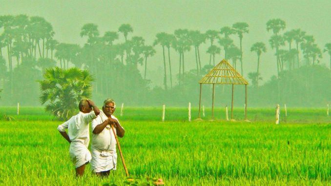 Can agriculture revive Indian economy?